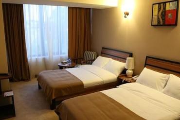 """фото Standart SGL, Отель """"Наири"""", Сочи, Сочи"""