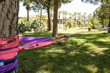 """фото развлечения, Отель """"Tui Blue Palm Garden"""" (ex. Iberotel Palm Garden), Сиде"""