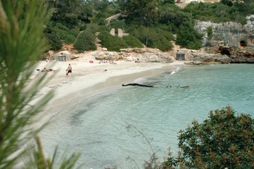 """фото Пляж, Отель """"Barcelo Ponent Playa 3*"""", Майорка"""