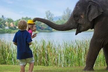 """фото развлечения для детей, Отель """"Angsana Laguna Phuket"""" 5*, Пхукет"""