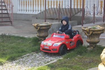 """фото Для детей, Гостиница """"Золотой слон"""", Николаевка"""